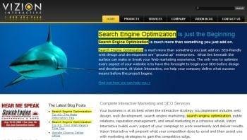 Vizion Seo Keyword  Vizion Interactive