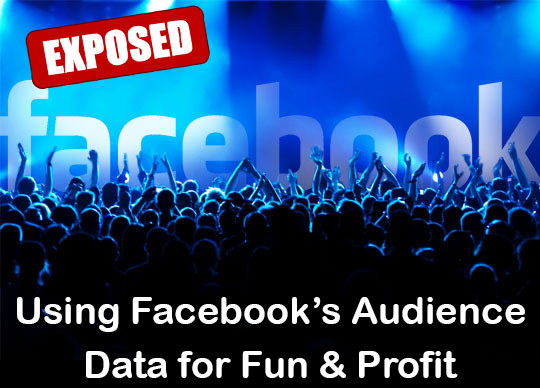 facebook's audience data for fun and profit