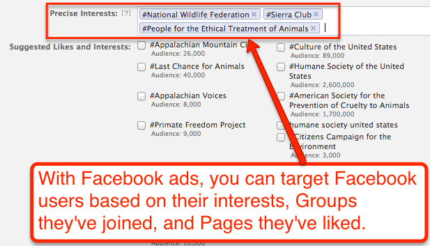 Facebook precise interests for ads