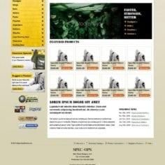 Spec Home  Vizion Interactive