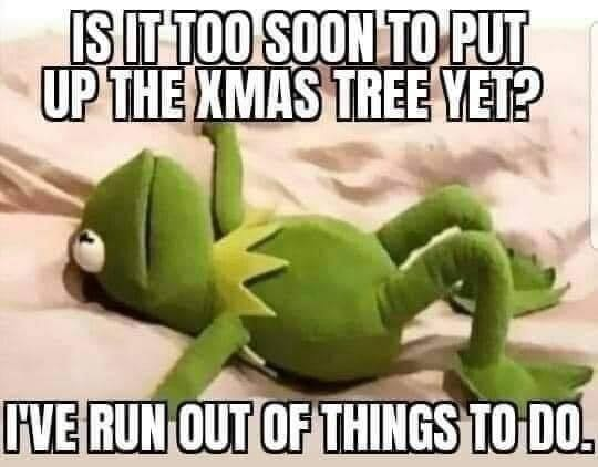 Kermit 12 Days of Holiday Memes Vizion Interactive