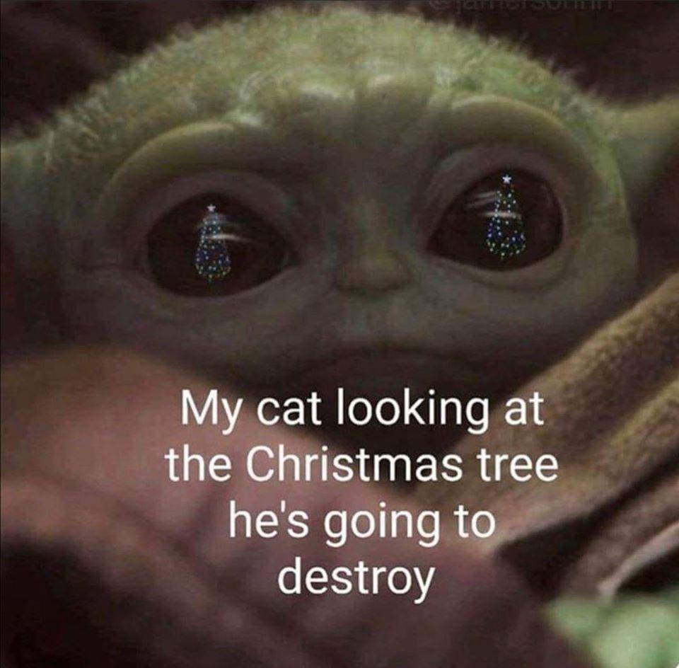 Meme 12 Days of Holiday Memes Vizion Interactive