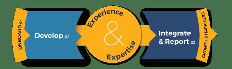 Process Wheel 16 Persona Development Services Vizion Interactive